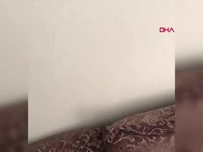Oturma odasında yılan şok etti