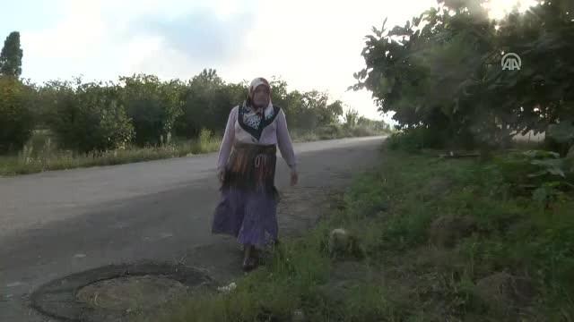 Mısırın çuvala doldurulması ve kadınların sırtında taşımaları